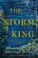 Go to record The storm king : a novel